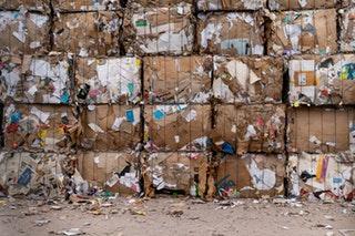 Semaine européenne de réduction des déchets : comment le digital contribue à la gestion des déchets